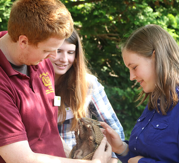 secondary students with an armadillo